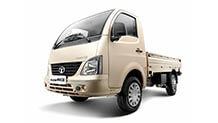 Tata Super Ace champagne gold