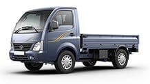 Tata Ace Superace Mint Castle grey LH small