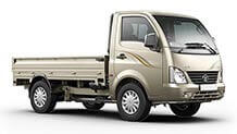 Tata Super Ace Mint Champagne Gold