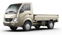 Tata Ace supermint Champagne gold small