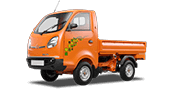 Tata Ace Zip XL Orange Colour